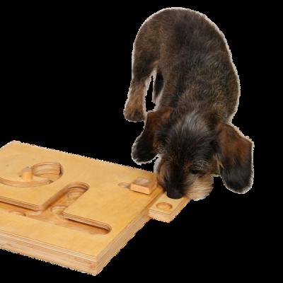 """Hund spielt das Nasenkisten-Spiel """"Schublade"""""""