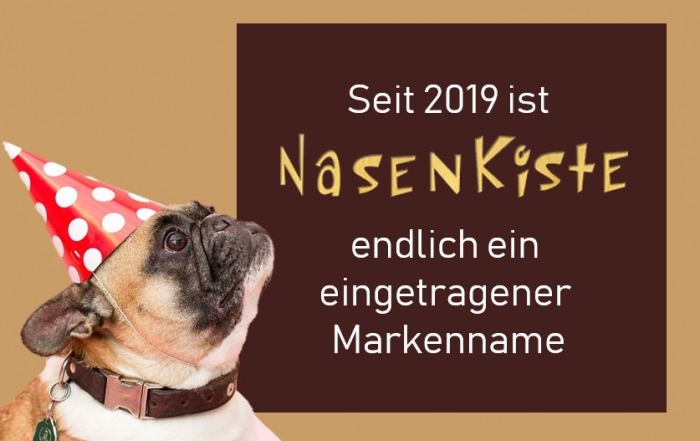 Die Nasenkiste als patentiertes Hunde Intelligenzspielzeug