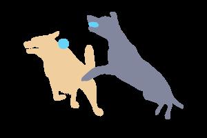 Viel Spielspaß für Hunde aller Art
