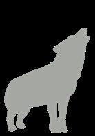 ausgelastete Hunde sind ausgeglichene Hunde